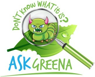 Garden Care Information - South Africa - Ask Greena
