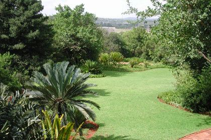National Botanical Gardens - South Africa - Pretoria