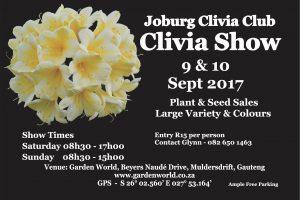 Clivia Flower Show 2017 Muldersdrift - Joburg Clivia Club Show