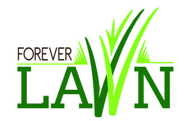 Forever Lawn Synthetic Grass - Cape Town