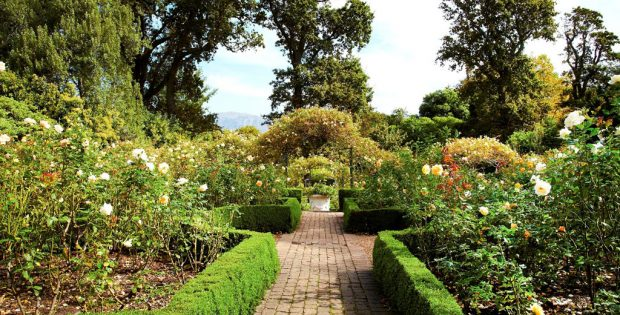 Garden Tours @ The Cellars Hohenort - Cape Town