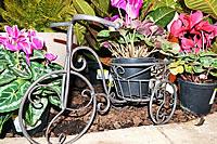 Garden Decor - Muldersdrift - Garden World