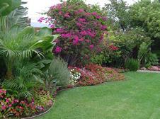Garden Services - Centurion - Greensquare