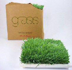 Instant Organic Lawn - Port Elizabeth