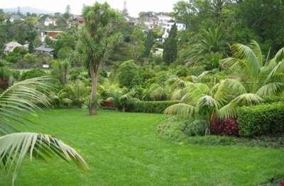 JD Garden Services and Pools - Pretoria