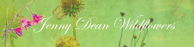 Nursery - Hillcrest - Jenny Dean Wildflowers