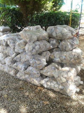 Bagged Pebbles - Pretoria North - Landscaping Stone Pebbles SA