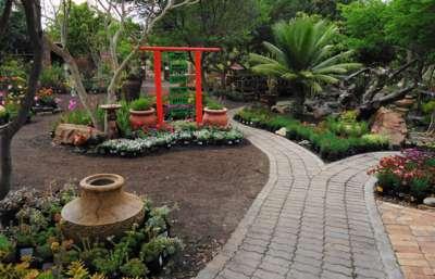 Leani Nursery Tea Garden - Garden Route