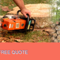 PMR Tree Felling Services - Randburg
