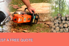 PMR Tree Felling Services - Randburg
