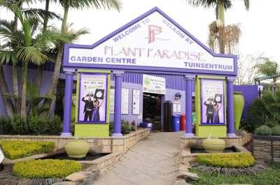 Garden Centre - Moreleta Park - Plant Paradise