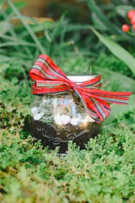 Affordable Plant Gift Idea - Succulent in a Jar