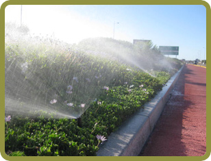 Irrigation - Cape Town - Silvertree Landscapes