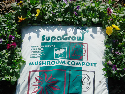 Stanler Farm - Mushroom Compost - SA