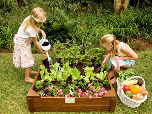 Vegetable Garden Box for Kids - Just for Kids