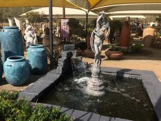 Water Plant - Water Features - Hartebeespoort