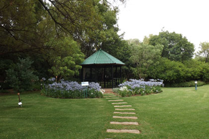 National Botanical Gardens South Africa Indigenous Plants