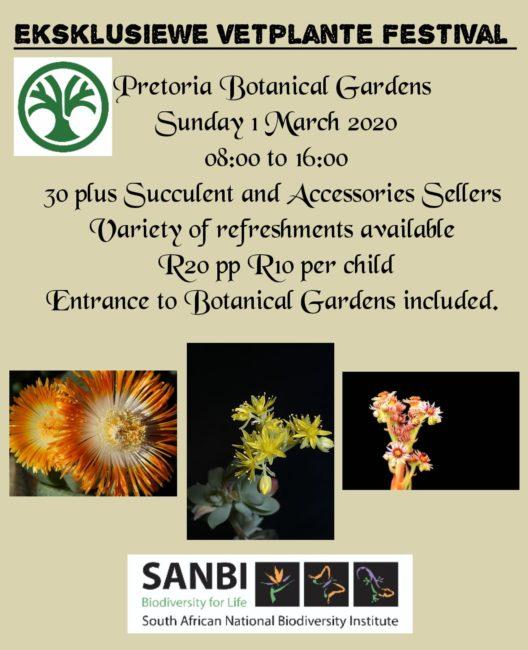 Exclusive Succulent Festival 2020