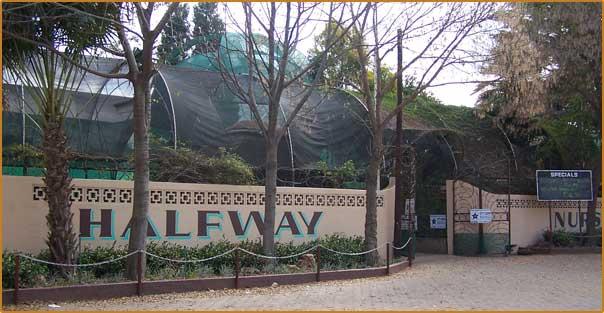 Instant Lawn Deliveries | Halfway Nursery Randvaal