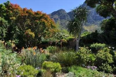 Kirstenbosch NBG Water Wise Garden