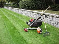 Rent A Gardener Garden Maintenance