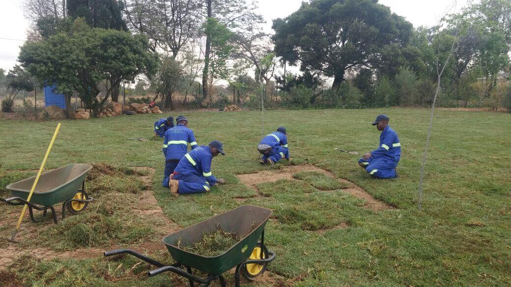 Spring Clean & Garden Services