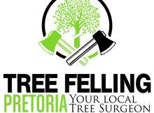 Tree Felling Pretoria - Gauteng